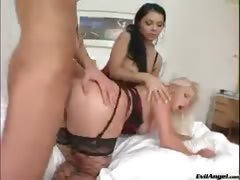 Jay's Anal Archives #02